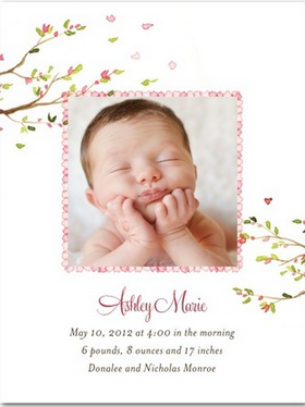Tiny Prints Birth Announcement