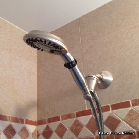 Hand Held Shower Head Home Depot