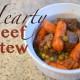 beef stew-008