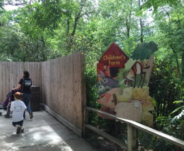 Check Out The Latest from the Children's Zoo at the Bronx Zoo!
