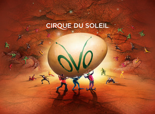 Save on Tickets to OVO from Cirque Du Soleil in NYC!